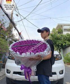 hoa hồng kim tuyến màu tím