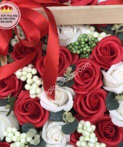 hoa sáp giá rẻ