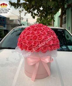 hộp hoa sáp hình trụ