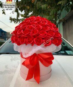 hộp hoa sáp trụ tròn